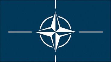 Около 18% граждан не смогли ответить на вопрос о вступлении в НАТО - фото 1