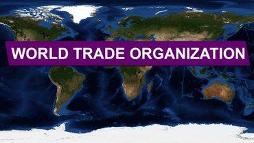 Россия оспаривает право Украины на Крым на уровне ВТО - фото 1