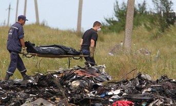 Дипломат пояснил, что заявление следователей о катастрофе Боинга не было политическим - фото 1