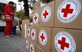 МККК раздаст боевикам и их семьям гуманитарную помощь - фото 1