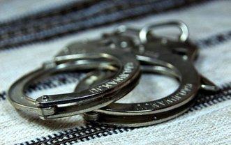 преступнику угрожает 10 лет с конфискацией имущества - фото 1