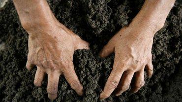 Земля была передана в пользования без согласования с Министерством образования и науки - фото 1