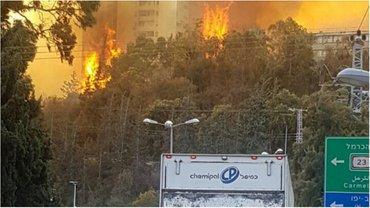 Для тушения пожаров используют авиацию - фото 1