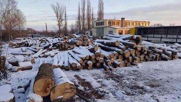 Злоумышленники пытались сбыть древесину и скрыть следы противоправной деятельности - фото 1