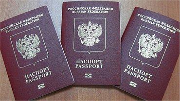 """""""Беркутовцы"""" получили российские паспорта - фото 1"""