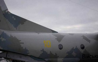 Пуля, застрявшая в самолете, будет отправлена в Гаагу - фото 1