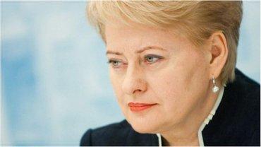 Грибаускайте отметила необходимость продолжения политики санкций  - фото 1