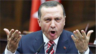 Эрдоган пообещал проучить Запад в случае положительного голосования  - фото 1
