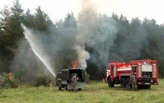 Сильная жара: В Чернобыле горят 25 гектаров леса - фото 1
