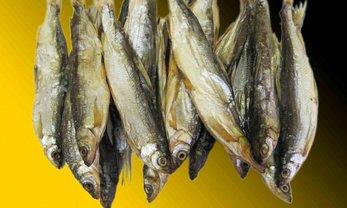 Киевлянин попал в реанимацию после покупки рыбы в магазине - фото 1