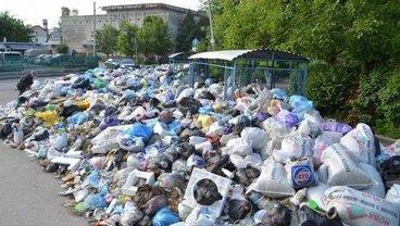 """Садового вынудили пойти на тяжелые условия """"компромисса"""" по вывозу мусора - фото 1"""