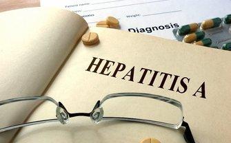 В приюте вспыхнул вирус гепатита А - фото 1
