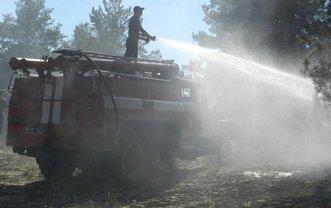 Спасатели тушат лес на Херсонщине  - фото 1