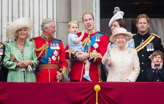 Королевская семья открыла вакансию - фото 1