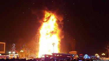 Дерево сгорело полностью - фото 1