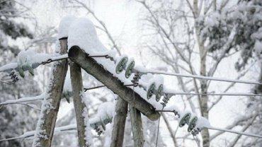 Из-за непогоды во Львовской области 53 населенных пункты остались без электроснабжения - фото 1