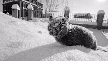 В Украину идет похолодание - фото 1