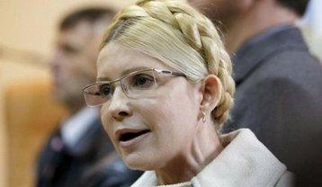 "Юлия Тимошенко ""забыла"" о бизнесе мужа - фото 1"