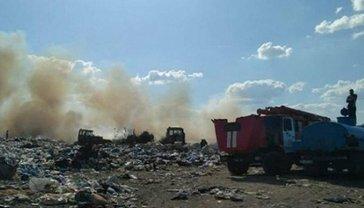 В Николаеве горит главная городская свалка - фото 1