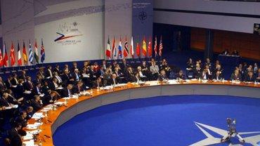 Парламентская ассамблея НАТО хочет вступления Украины в Альянс - фото 1