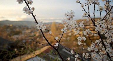 Прогноз погоды на 6 мая: солнечно, сильная жара начнет отступать - фото 1