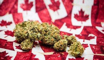 В ещё одной стране легализовали марихуану - фото 1