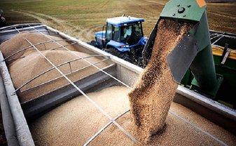 РФ меняет зерно Крыма на масло и овощи - фото 1