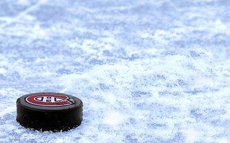 а финале НХЛ в США произошел курьезный случай - фото 1