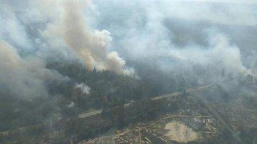 Продукты горения в лесу у ЧАЭС не распространяются в сторону Киева - фото 1
