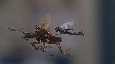 Человек-муравей и Оса: Летать так летать - фото 1