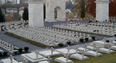 Поляка, повредившего Мемориал орлят на Лычаковском кладбище, оштрафовали на смешную сумму - фото 1