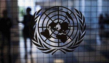 В ООН призвали к расследованию нападений на активистов в Украине - фото 1