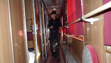 В Луганской области начали тщательную проверку всех пассажирских поездов - фото 1