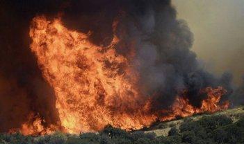 Лесные пожары, которые унесли много жизней  - фото 1