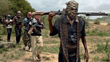 Террористы Боко Харам убили 30 человек - фото 1