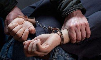 Спецназовцы задержали русского нелегала - фото 1