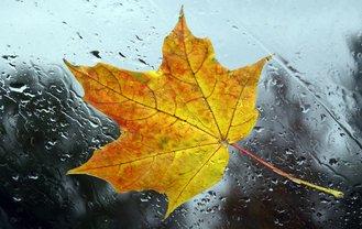Погода на октябрь в Украине: грозы и заморозки - фото 1
