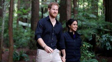 Принц Гарри и Меган Маркл завершили королевское турне - фото 1
