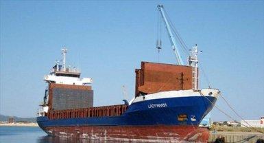 В Керченском проливе поврежден корабль из Тонго - фото 1