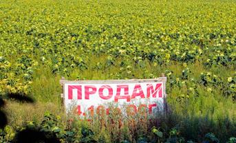 Мораторий на продажу земли будет действовать еще год - фото 1