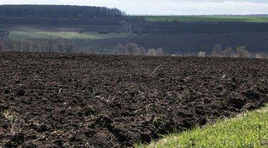 Закон о моратории на продажу земли рекомендуют ветировать - фото 1