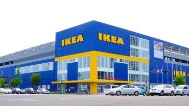В IKEA решили беречь природу - фото 1