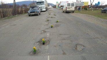 К приезду президента на дорогах расставили горшочки с цветами - фото 1