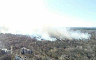 В Зоне отчуждения - очередной масштабный пожар - фото 1