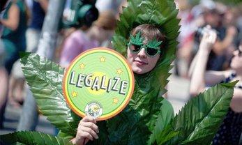 В Раде поддержали легализацию наркотиков - фото 1