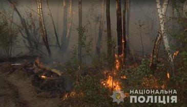"""Чернобыльской поджигательнице """"светит"""" два года тюрьмы - фото 1"""