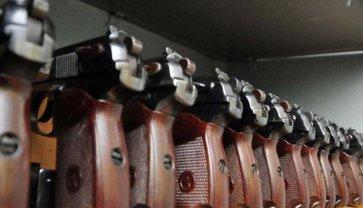 В МВД наградили огнестрелом 438 человек за прошлый год - фото 1