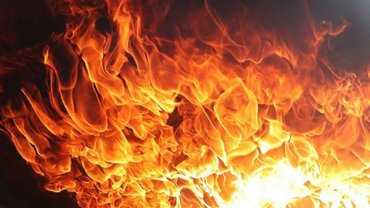 Во Львове мужчина сжег машину журналистки и поплатился – ВИДЕО - фото 1