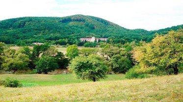 Закарпатье - один из топовых регионов для отдыха в Украине - фото 1