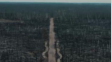 Огонь уничтожает Зону отчуждения - фото 1